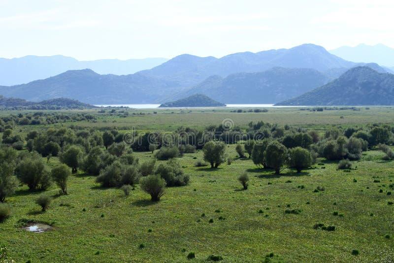Widok od halnego jeziornego Skadar zdjęcie stock