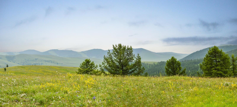Widok Od Mongolskiej góry Iść Na Na zawsze zdjęcia stock