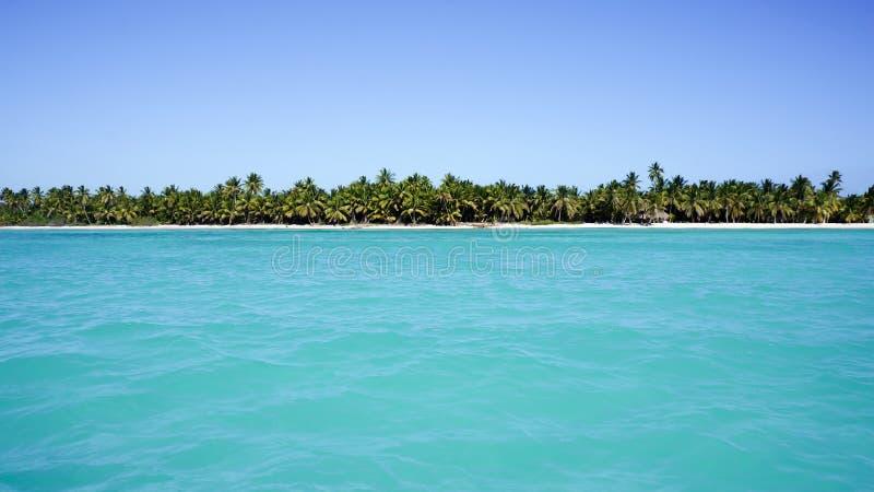 Widok od morza na plaży Isla Saona obrazy royalty free