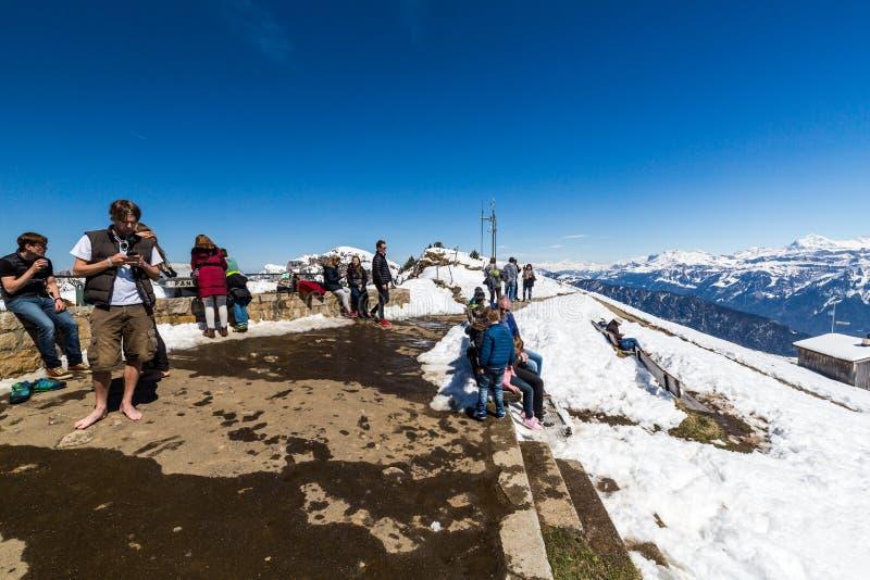 Widok od Niederhorn Beatenber góry w Szwajcaria obraz stock