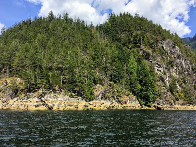 Widok od oceanu skalisty brzeg zakrywający wiecznozielonymi drzewami stroma skalista faleza i podczas gdy wodniactwo w pokojowym  obrazy royalty free
