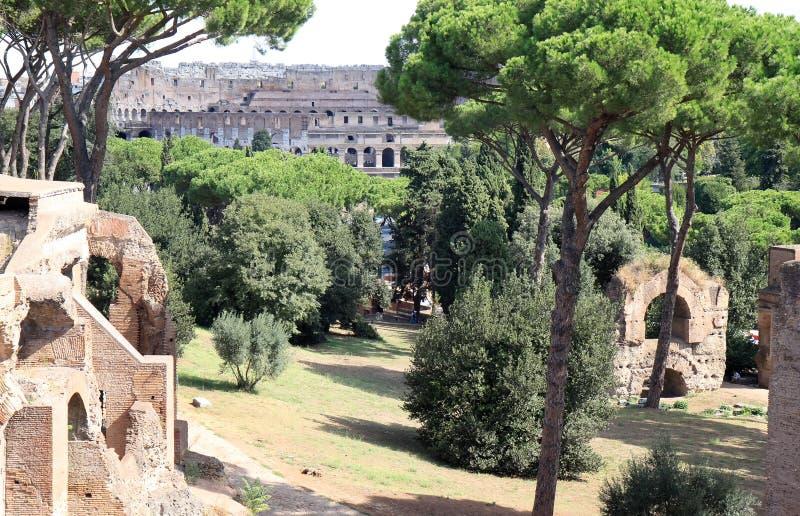 Widok od palatynu wzgórza przy Colosseum, Rzym, Włochy obrazy stock