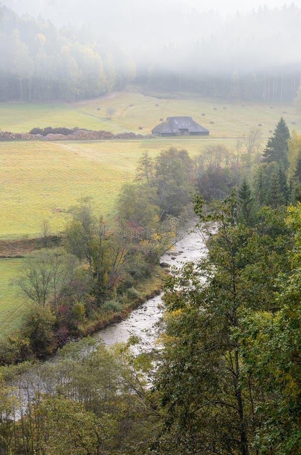 Widok od skały nad lasem i rzeką zdjęcie royalty free
