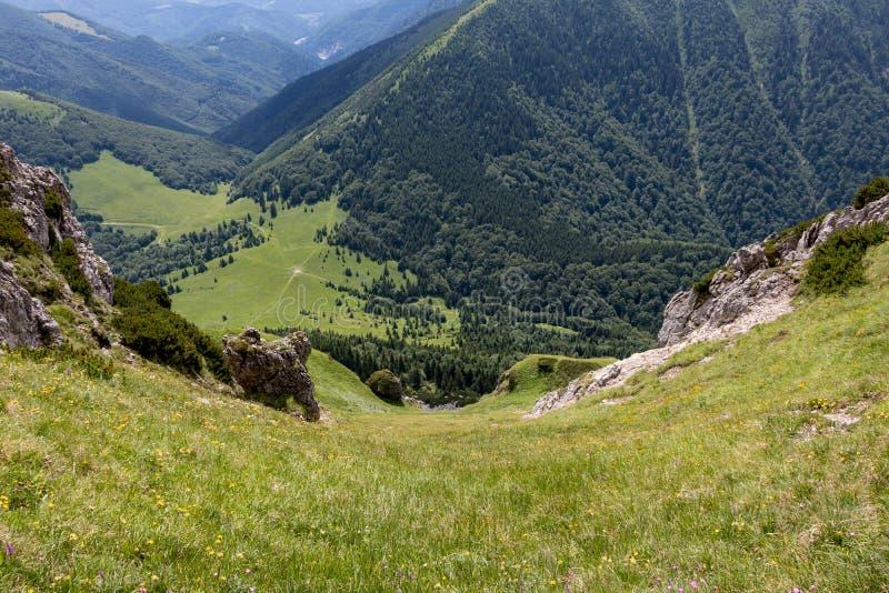 Widok od Wielkiego Rozsutec wzgórza w Vratna dolinie przy parkiem narodowym Mala Fatra, Sistani zdjęcia stock