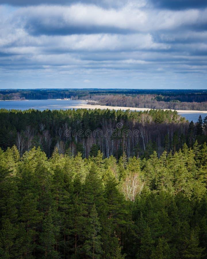 Widok od wierzchołka lasy i jezioro zdjęcia stock