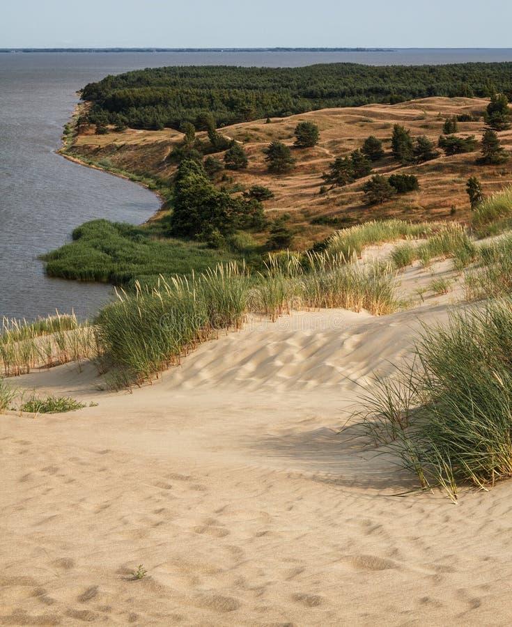 Widok od Wydmowego Nagliu, Curonian mierzeja, Lithuania obraz stock