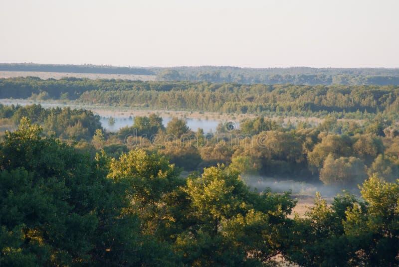 Widok od wzgórzy zdjęcie royalty free