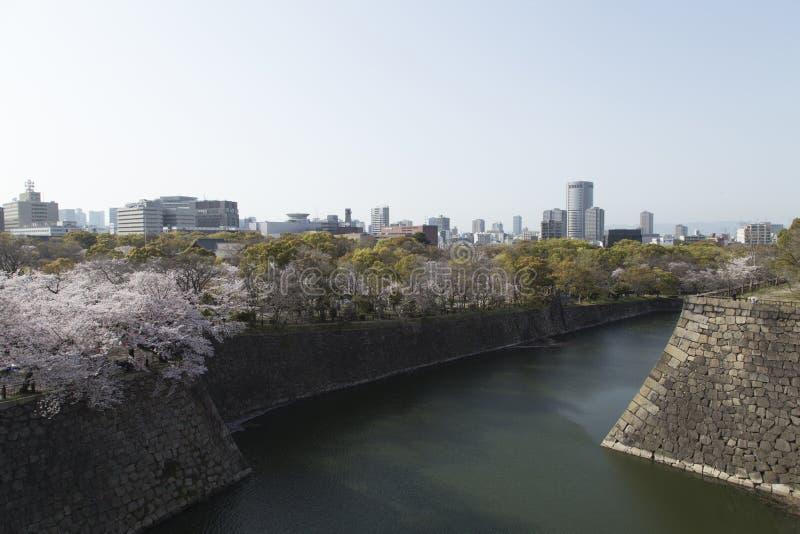 Widok Osaka i kanał od kasztelu podczas czereśniowych okwitnięć na słonecznym dniu obraz royalty free