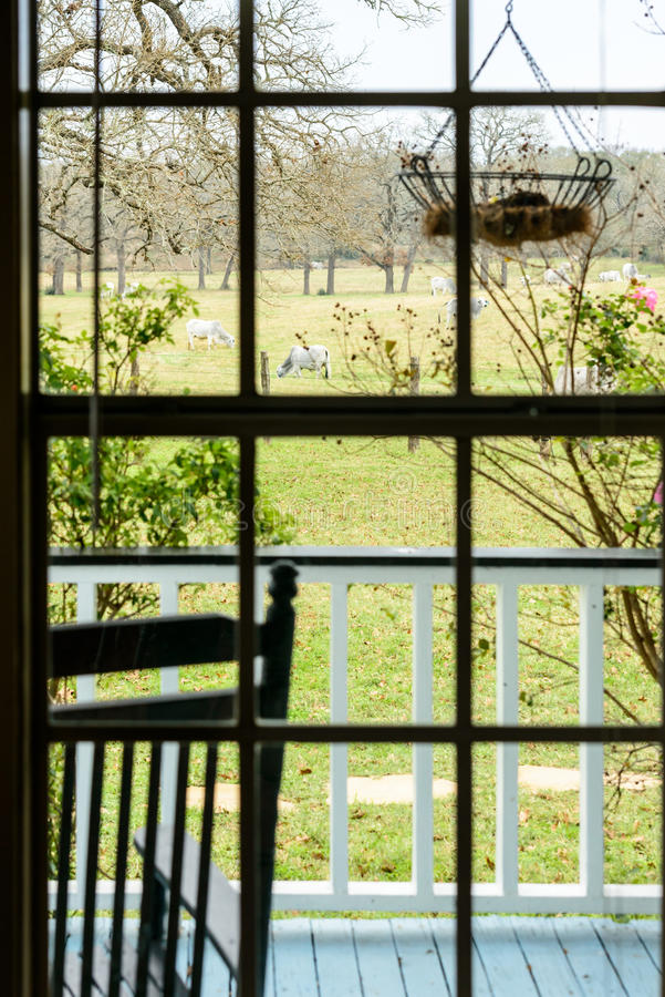 Widok paśnik z krowami przez rancho domu okno zdjęcia stock