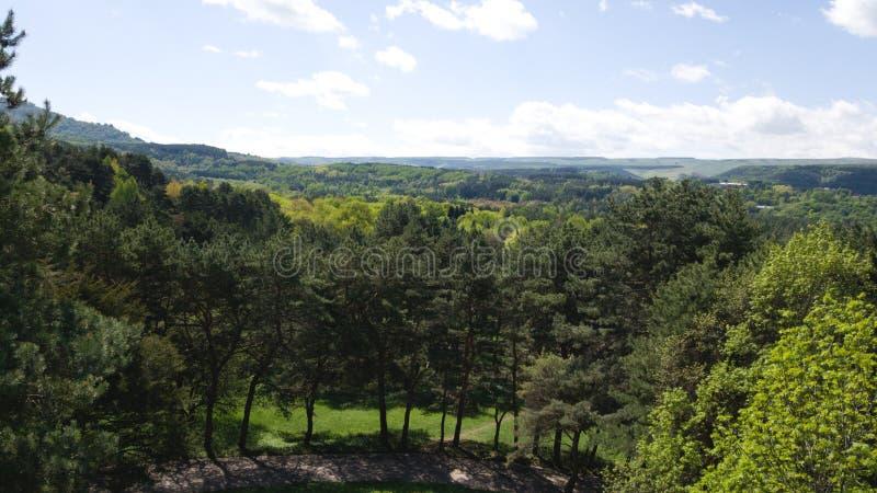 Widok park w Kislovodsk w Stavropol regionie w Rosja Podróż Rosja w wiośnie obraz royalty free