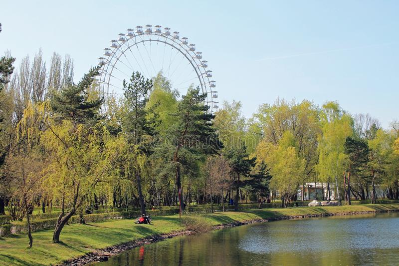 Widok park z i Ferris koło przeciw niebieskiemu niebu delikatnie zielonymi drzewami i stawem na jasnym wiosna dniu obrazy royalty free