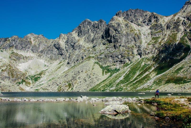 Widok piękny jezioro w lato górach obraz stock