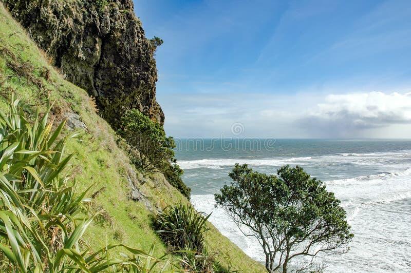 Widok Piha plaża obrazy royalty free