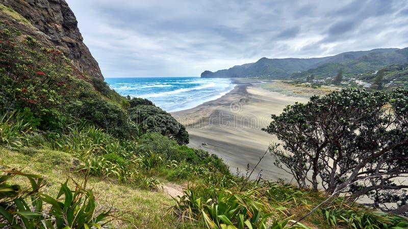 Widok Piha plaża w Nowa Zelandia obraz royalty free