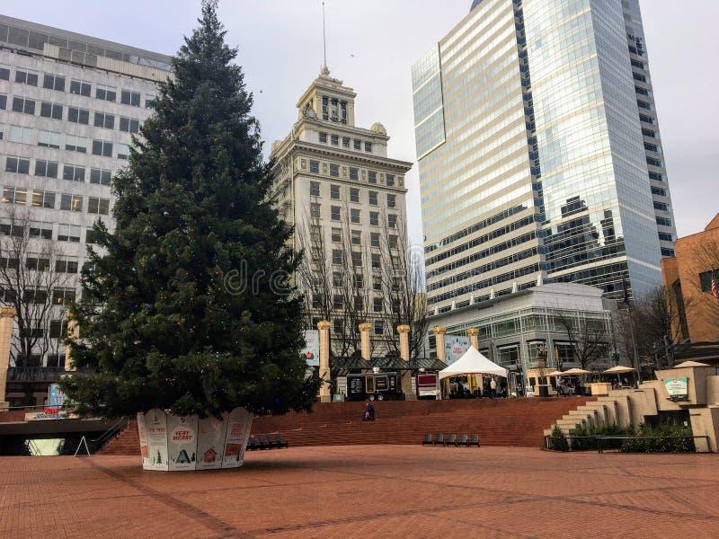 Widok pionierskiego placu sądu z ogromną choinką na święta w Portland w stanie Oregon fotografia royalty free