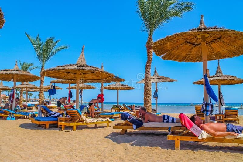 Widok plaża i letnicy w loungers na brzeg Czerwony morze sunburn w słońcu na wakacje obrazy royalty free