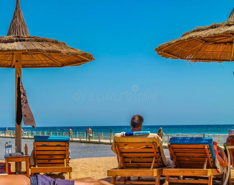 Widok plaża i letnicy w loungers na brzeg Czerwony morze sunburn w słońcu na wakacje obrazy stock