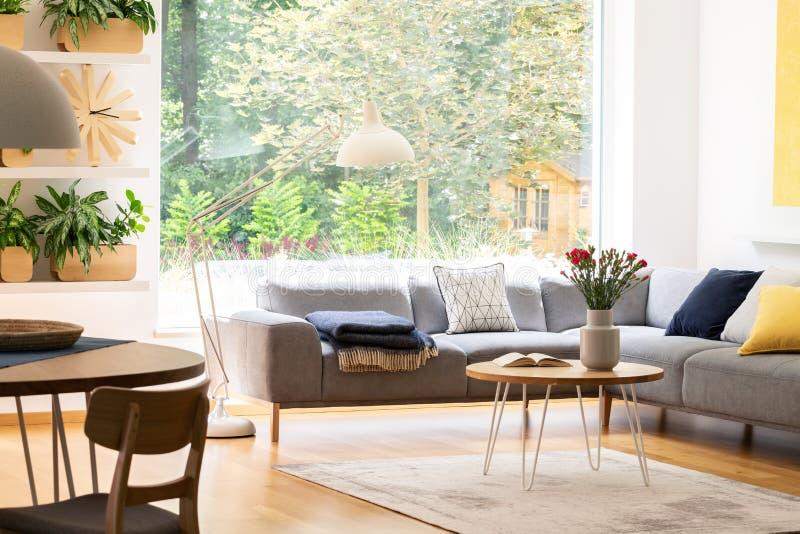 Widok podwórko przez wielkiego okno w naturalnym żywym izbowym wnętrzu z roślinami, drewnianym meble i comfy kanapą, obraz royalty free