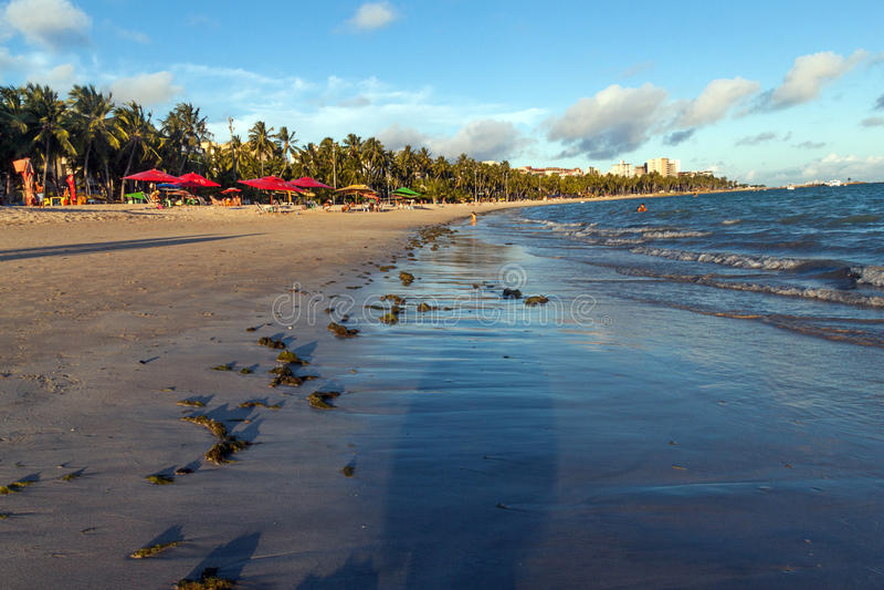 Widok Ponta Verde obrazy royalty free