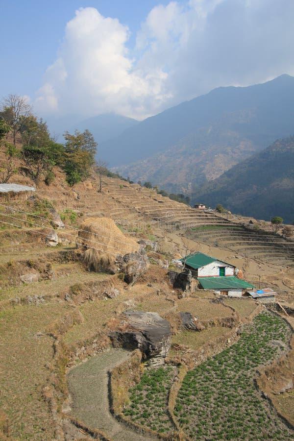 Download Widok Poon wzgórze w Nepal obraz stock editorial. Obraz złożonej z piękny - 53785204