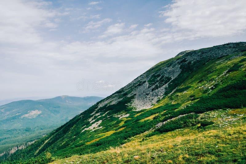 Widok porosły góra wierzchołek obrazy stock