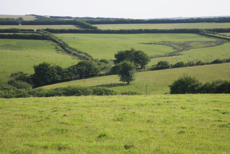 Widok przez Exmoor zdjęcie royalty free