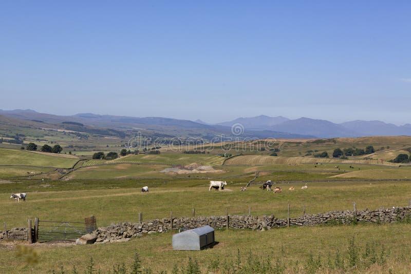 Widok przez wzgórza blisko od Llyn Brenig, Północny Walia, UK fotografia royalty free