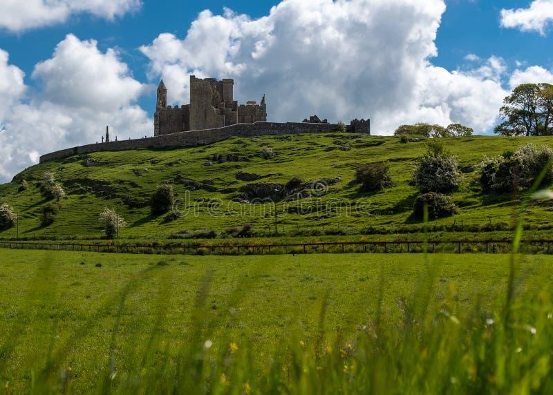 Widok przez zieleni pola wspania?a ska?a Cashel kamienny opactwo przeciw jaskrawemu niebieskiemu niebu i forteca i, i fotografia royalty free