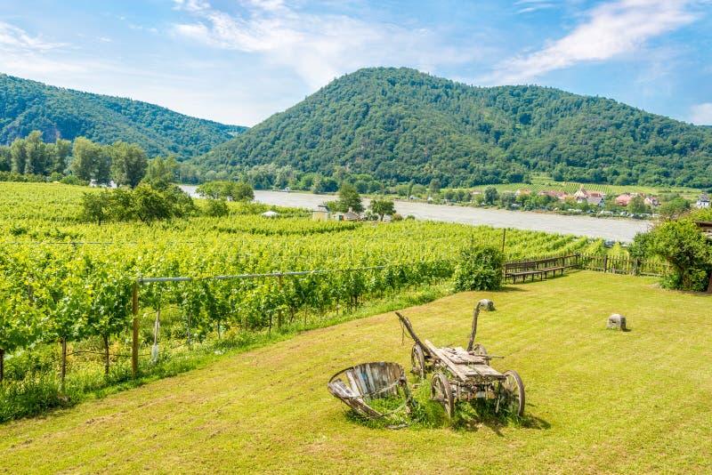 Widok przy Danube rzeką w i winnicami Durnstein, Austria - zdjęcia stock