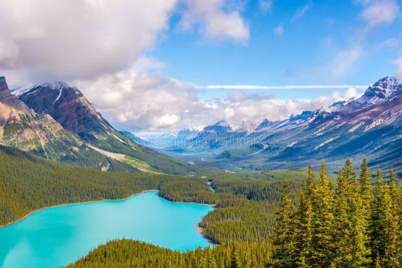 Widok przy Peyto jeziorem i północnym halnym masywem od łęku szczytu w Kanadyjskich Skalistych górach - Banff park narodowy zdjęcia stock