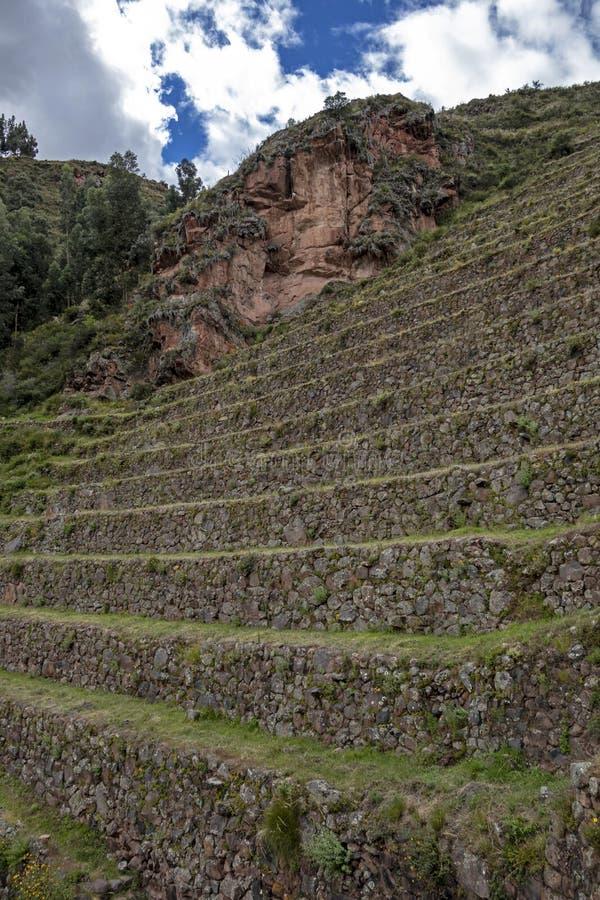Widok przy rolnictwa inka tarasami używać dla rośliien uprawia ziemię, Archeological park w Świętej dolinie, Pisac blisko Cusco,  obrazy stock