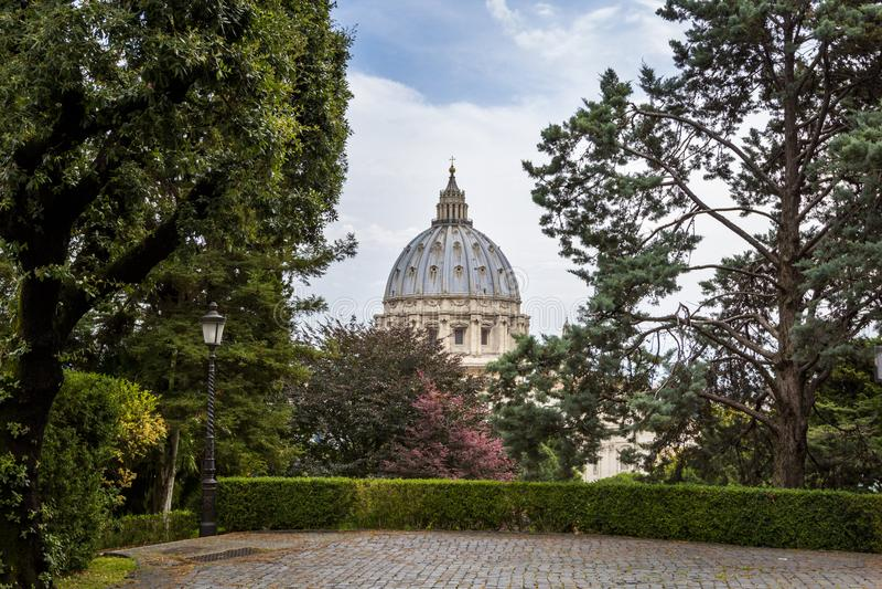 Widok przy St Peter ` s bazyliki bazyliką Di San Pietro od Watykańskich ogródów z z sosnami i brukować ścieżkami, Rzym, Włochy obrazy royalty free
