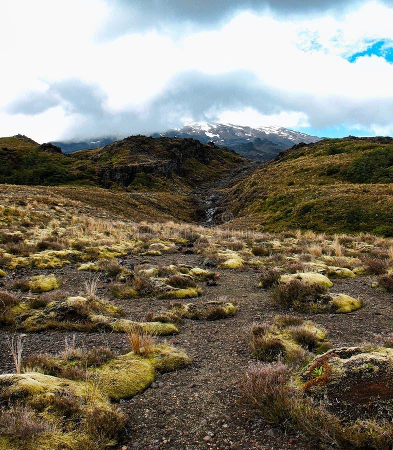 Widok przy Tongariro parkiem narodowym zdjęcia royalty free