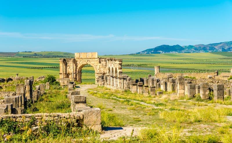 Widok przy ulicznym Decumanus Maximus w ruinach antyczny miasto Volubilis, Maroko - obraz stock