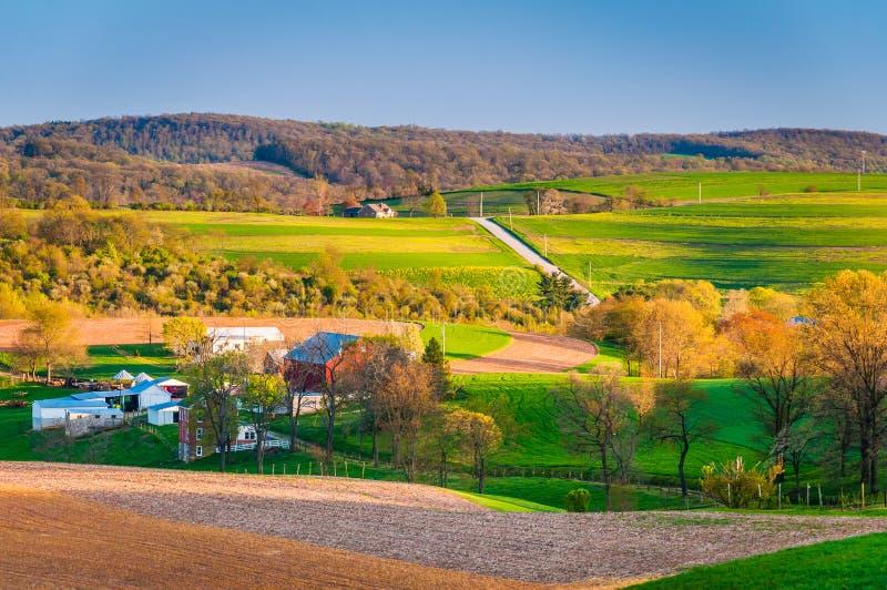Widok rolni pola i toczni wzgórza w wiejskim Jork okręgu administracyjnym, Penn obraz royalty free