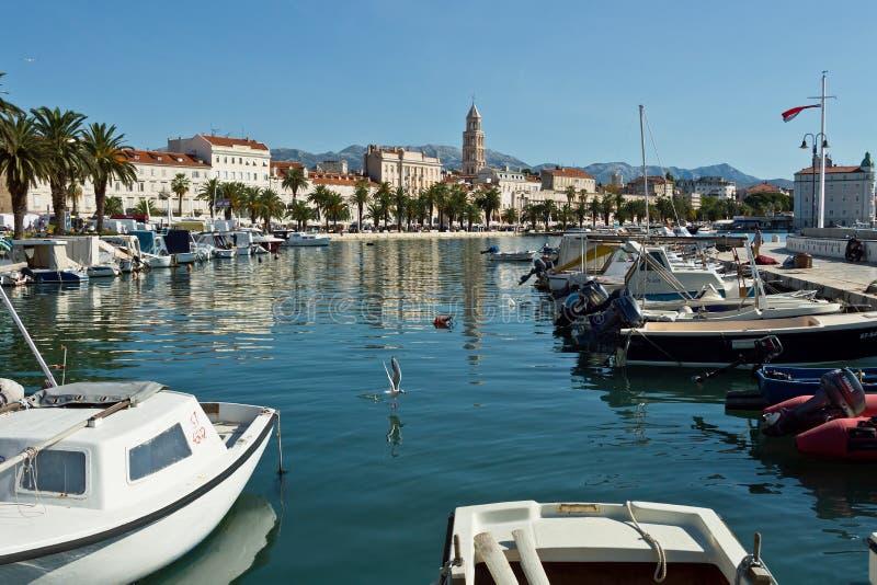 Widok roz?am, Chorwacja zdjęcie royalty free