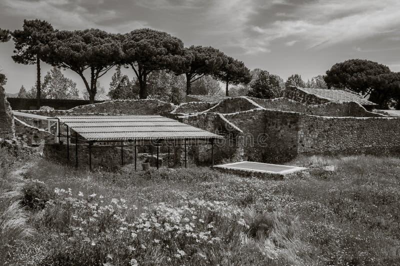 Widok ruiny Pompeii, Włochy zdjęcia royalty free