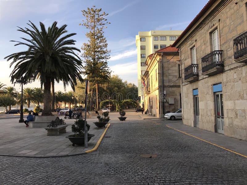Widok rynek z drzewko palmowe ławkami przy Cambados Galicia Hiszpania i krzakami obrazy stock