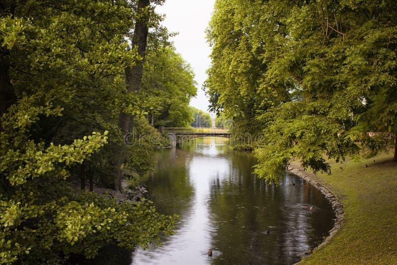 Widok rzeka i drzewa przy Hofgarten parkiem zdjęcie stock