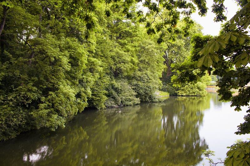 Widok rzeka i drzewa przy Hofgarten parkiem obraz stock