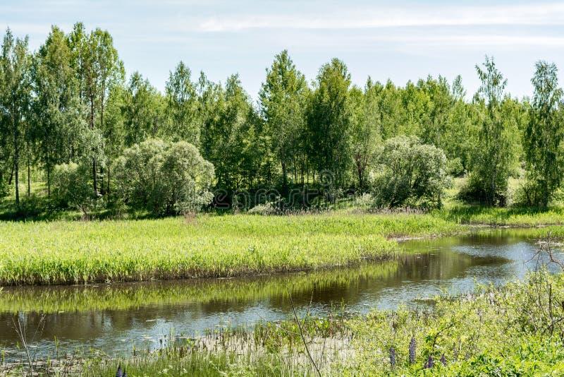 Widok rzeka i niebieskie niebo z chmurami, lato słoneczny dzień zdjęcia royalty free