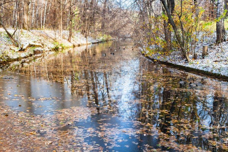 Widok rzeka w miastowym parku zakrywającym pierwszy śniegiem obraz royalty free