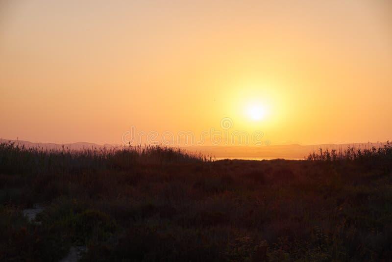 Widok słone jezioro z piękną menchii wodą Zmierzchu pomarańczowy słońce sąsiedztwo Lasów salinas, Torrevieja, Hiszpania fotografia stock