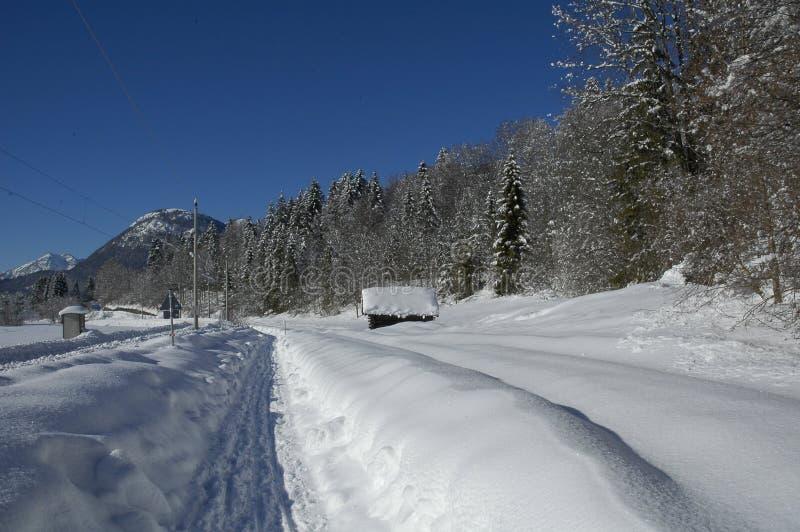 Widok sceniczny zima krajobraz w Bawarskich Alps fotografia royalty free