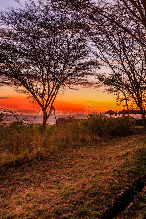 Widok Serengeti fotografia stock