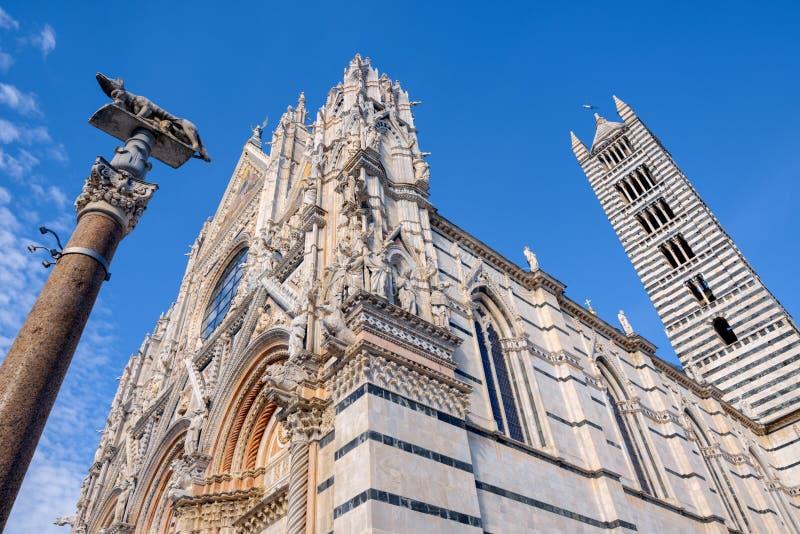 Widok Siena Santa Maria Assunta Duomo Katedralni di Siena wewnątrz zdjęcia royalty free