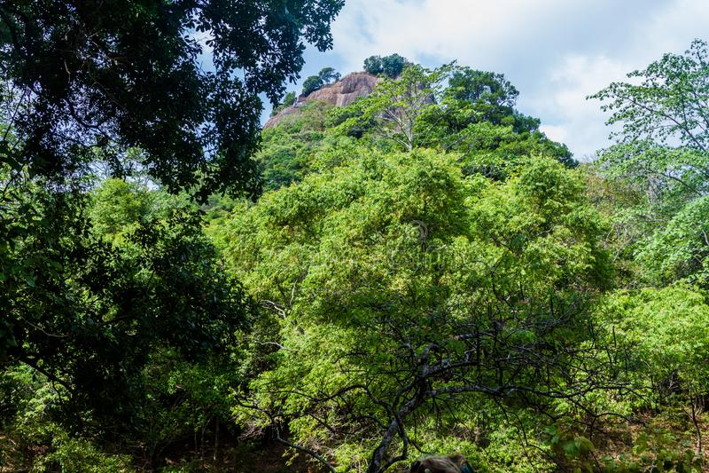Widok Sigiriya lwa skała, Sri Lan obraz stock