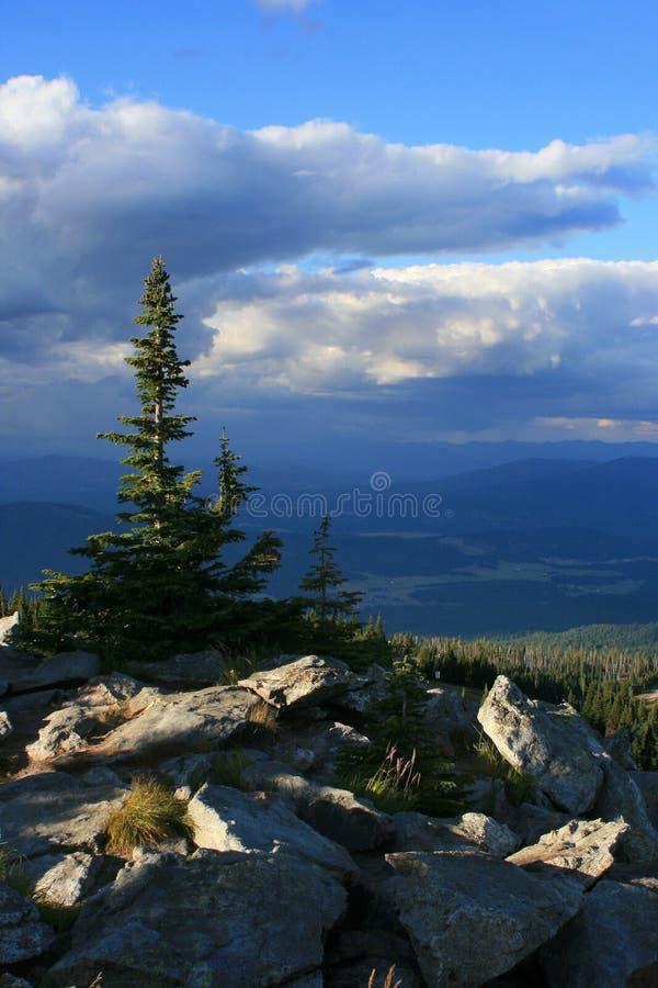 Widok Spirytusowy Jezioro od Mt. Spokane zdjęcia stock