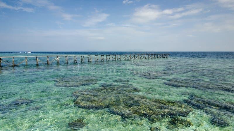 Widok stary łamający jetty podczas słonecznego dnia z koralem s i zielenią zdjęcie royalty free