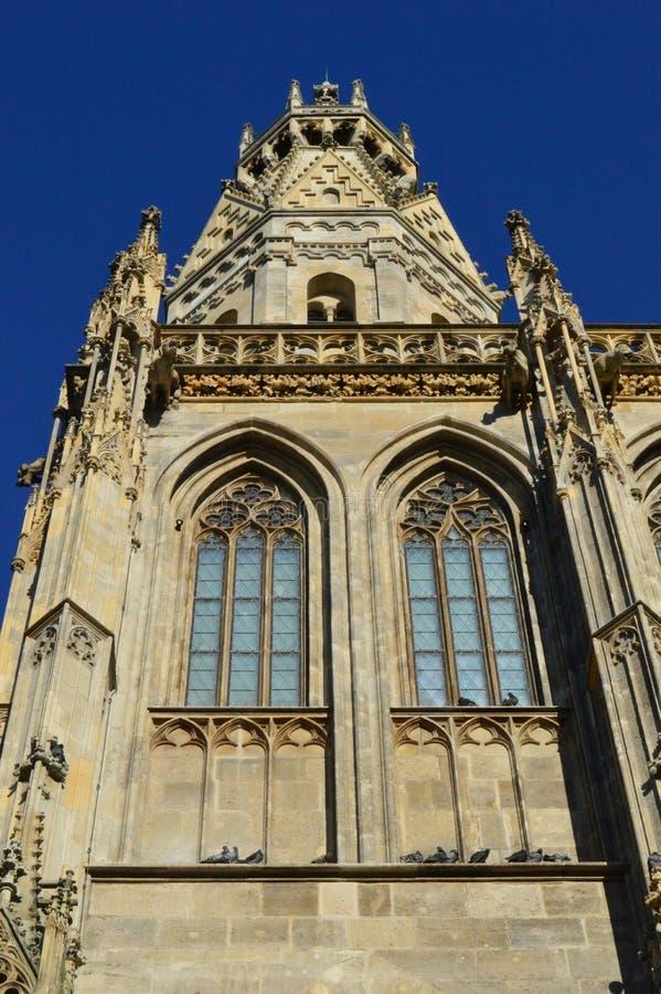 Widok stephansdom iglica Wiedeń Austria zdjęcie royalty free